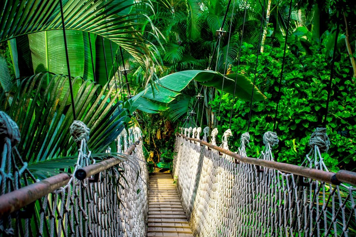 Tourisme vert quelle destination choisir